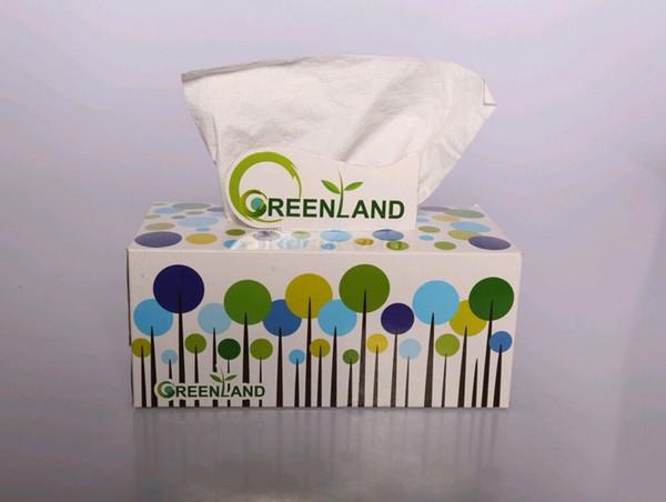 دستمال كاغذى 300 برگ گرین لند-تصویر اصلی