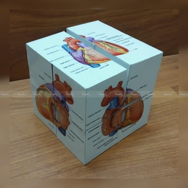 روبیک مکعب پزشک قلب-تصویر اصلی