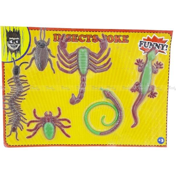 مجموعه حشرات ژله ای وکیوم شده-تصویر اصلی