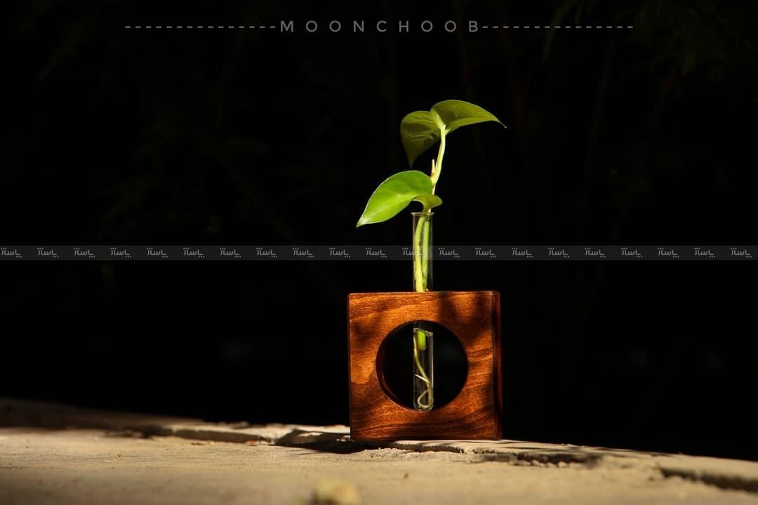 گلدون های چوبی (دُردونه)-تصویر اصلی