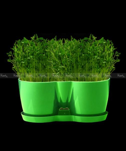 پک گلدان با بذر و کود-تصویر اصلی