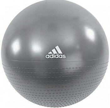 GYM Ball Grey-تصویر اصلی