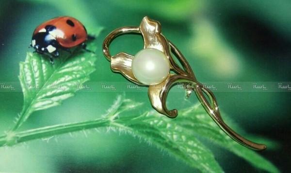 گل سینه مجلسی-تصویر اصلی