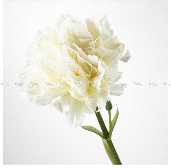 گل تک شاخه صنوبر ایکیا مدل SMYCKA-تصویر اصلی