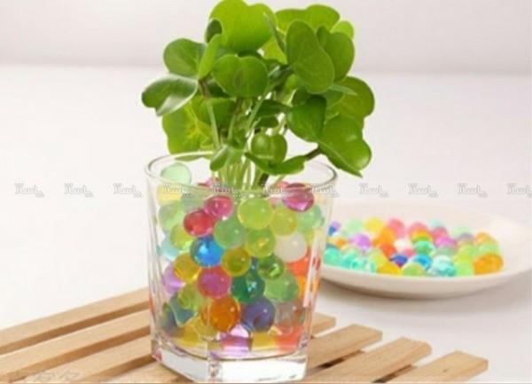 خاک ژله ای مناسب برای گلدان و تفنگ اسباب بازی و ساخت میشبال-تصویر اصلی