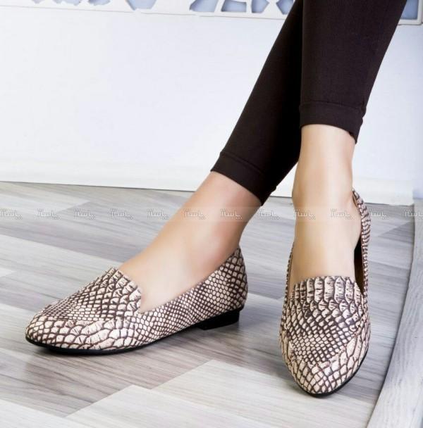 کفش بابت پوست ماری-تصویر اصلی