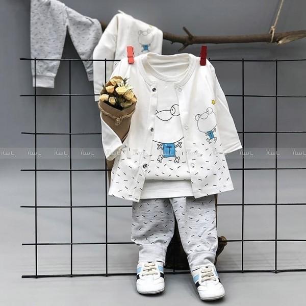 سه تیکه نوزادی قورباغه-تصویر اصلی