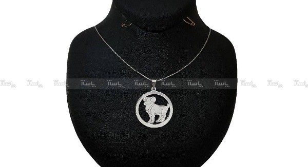 گردنبند نقره ماه تولد فروردین-تصویر اصلی