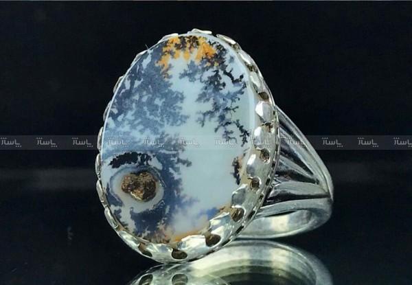 انگشتر شجر طبیعی زیبای منظره-تصویر اصلی