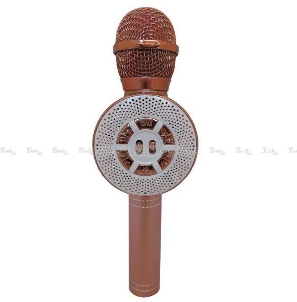 میکروفون اسپیکر WS-669-تصویر اصلی