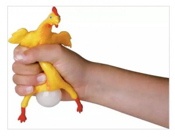 مرغ تخم گذار کوچک-تصویر اصلی