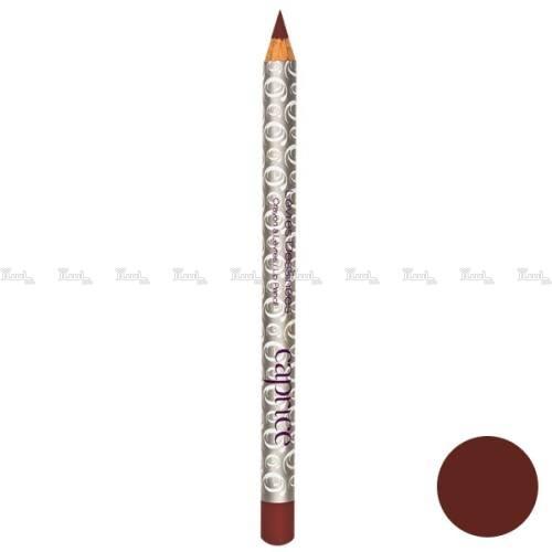مداد لب کاپریس سری Levres Dessinees مدل Brun Naturel شماره 01-تصویر اصلی