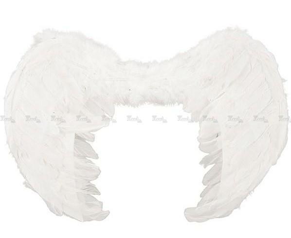 بال نمایشی فرشته-تصویر اصلی