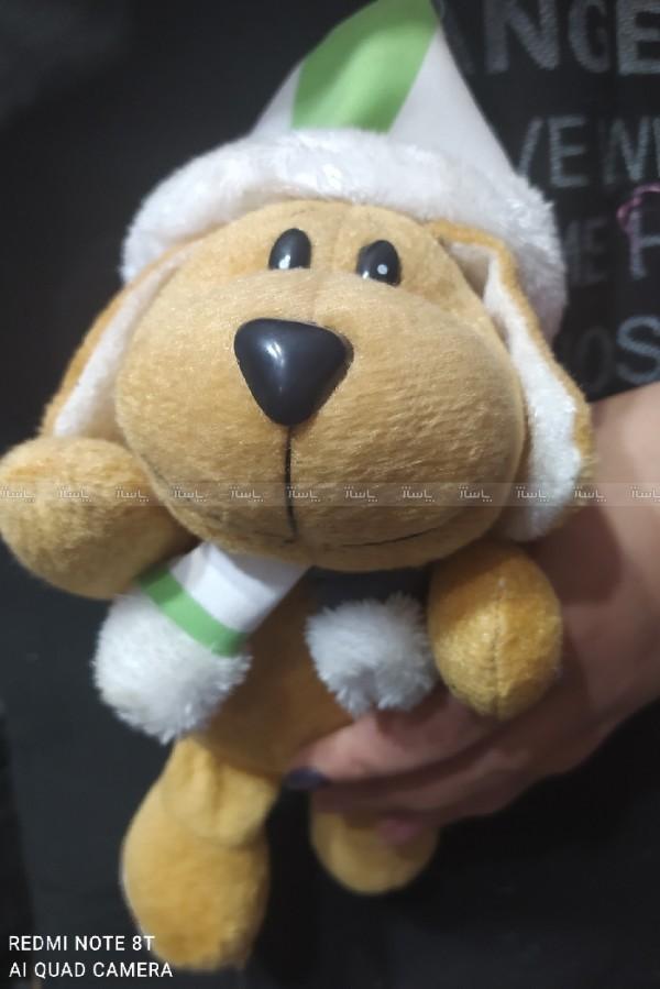 سگ پولیشی-تصویر اصلی