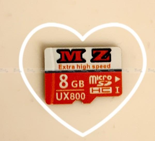 کارت ذخیره ۸ گیگ میکرو-تصویر اصلی