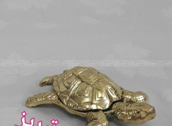 لاکپشت-تصویر اصلی