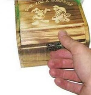 صندوقچه وحشت جهنده-تصویر 2