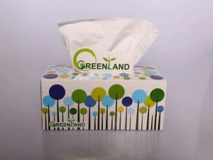 دستمال كاغذى 300 برگ گرین لند