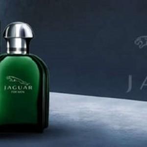 جگوار کلاسیک سبز-تصویر 3