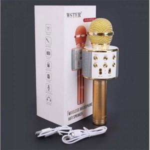 ميکروفون اسپیکر WSTER WS-858-تصویر 2