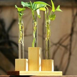 گلدان رومیزی-تصویر 2