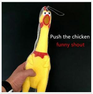 مرغ جیغ کش بزرگ