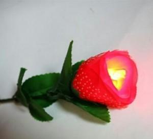 ابزار شعبده بازی حرفه ایی مدل گل نور-تصویر 2