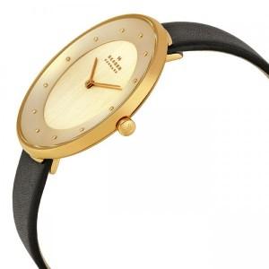 ساعت مچی عقربه ای زنانه اسکاگن مدل SKW2262-تصویر 2