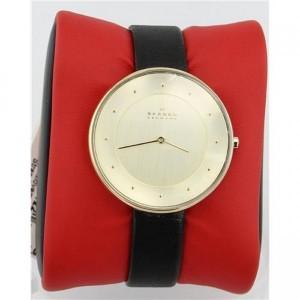 ساعت مچی عقربه ای زنانه اسکاگن مدل SKW2262-تصویر 3