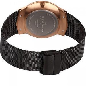 ساعت مچی عقربه ای زنانه اسکاگن مدل 809XLTRB-تصویر 4