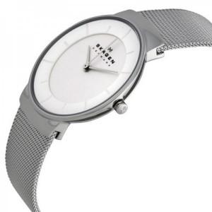 ساعت مچی عقربه ای زنانه اسکاگن مدل SKW2075-تصویر 2