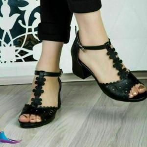 کفش برند مجلسی-تصویر 2