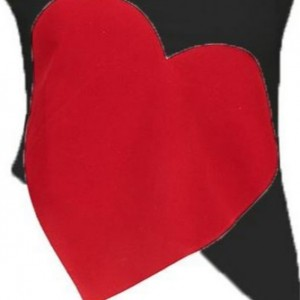 تاپ نیم تنه زنانه مدل قلب-تصویر 4