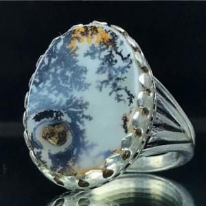 انگشتر شجر طبیعی زیبای منظره