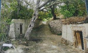 تابلو منظره کوچه باغ دو درب