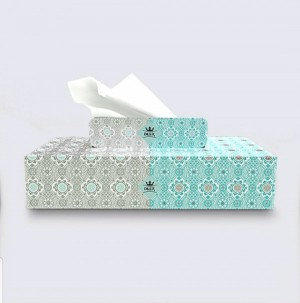 دستمال کاغذی ۱۰۰ برگ دایلکس(توژال)
