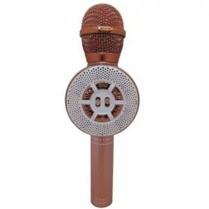 میکروفون اسپیکر WS-669