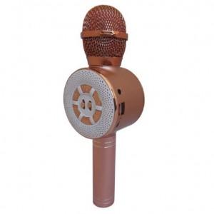 میکروفون اسپیکر WS-669-تصویر 2