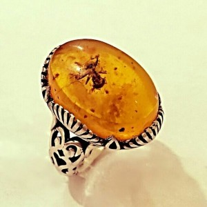 انگشتر کهربا مورچه ای-تصویر 2