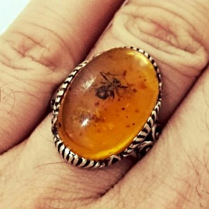 انگشتر کهربا مورچه ای-تصویر 3
