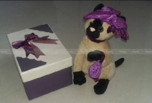 عروسک به همراه جعبه کادو