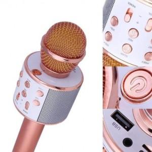 میکروفون اسپیکر مدل WS-858-تصویر 3