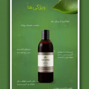 شامپو گیاهی مخصوص موهای خشک و آسیب دیده-تصویر 2