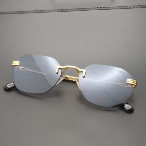 عینک کارتیر-تصویر 2