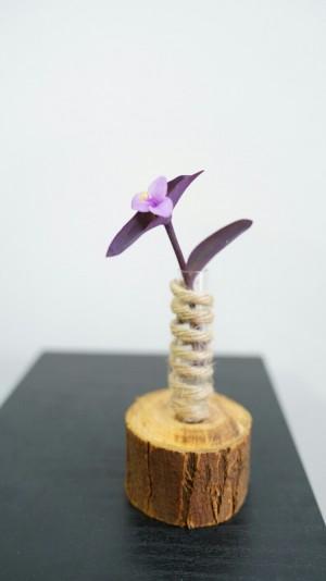 گلدان دکوراتیو-تصویر 2