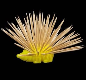 جوجه تیغی جاخلالی به همراه یک بسته خلال دندان-تصویر 4