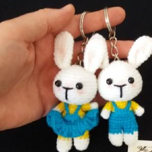 جاسو ئیچی خرگوش دختر پسر-تصویر 3