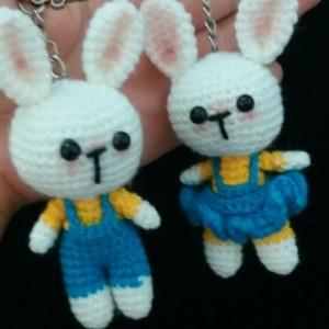 جاسو ئیچی خرگوش دختر پسر-تصویر 2