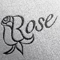 فروشگاه فروشگاه رز roz home appliance